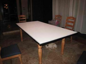 BLOG2_03_Best_Dining_Room_Table_Ever[1]